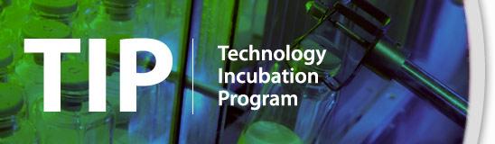 TIP Internship Program