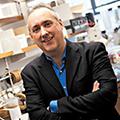 Dr. Dennis Wright Professor of  Medicinal Chemistry