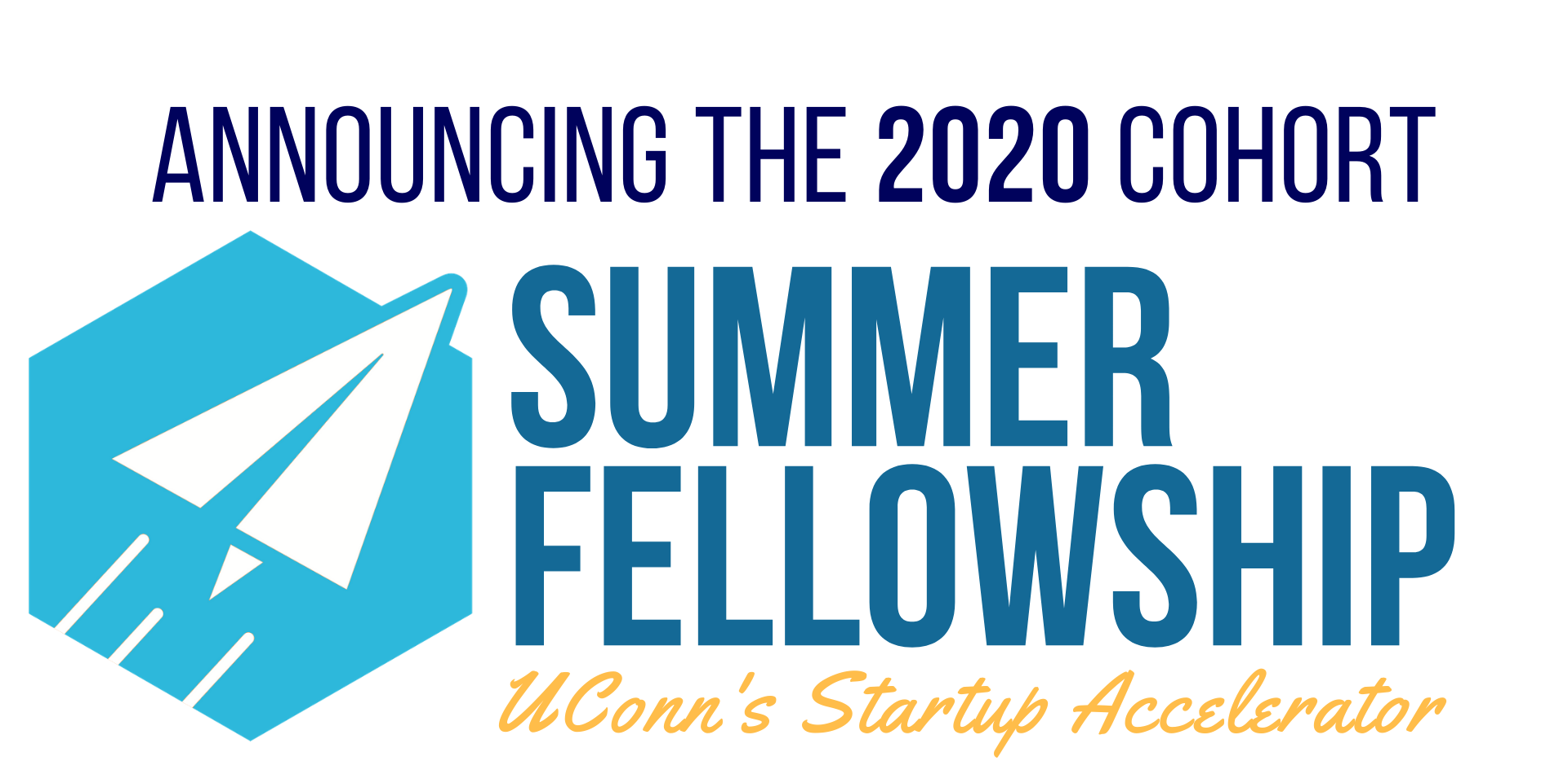 CCEI Summer Fellowship 2020 logo